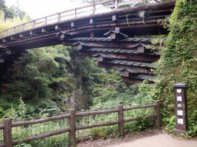 L JUN 2020  日帰り温泉Ⅱ・・・・・①猿橋