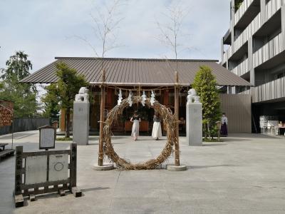 '20 東京さんぽ 神楽坂1(亀井堂~赤城神社~あかぎカフェ~毘沙門天善国寺~ペコちゃん焼)