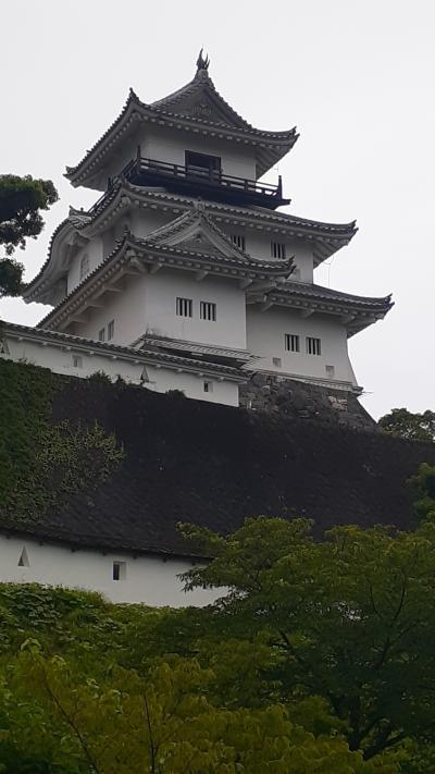 浜松発サクッと掛川日帰り散策記2020・06