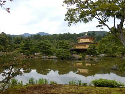 コロナ自粛明けの静かな京都へ(金閣寺、北野天満宮、三室戸寺、平等院など)泊りはしょうざんリゾート京都鷹峯です