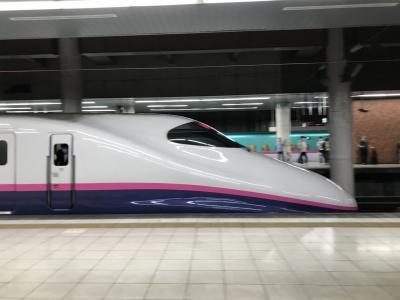 上越新幹線で新潟日帰り