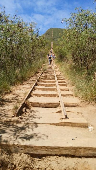 令和元年 お父ちゃん一人旅inHAWAII「ココヘッドに登りました」(予約編)
