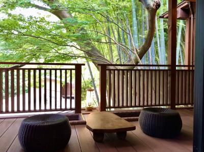 【初夏の箱根塔ノ沢】山の茶屋に泊まる一泊二日