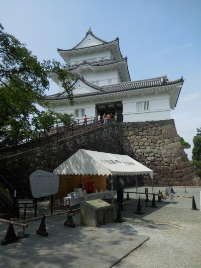 大雄山最乗寺~小田原城跡公園 神奈川県内で面白い場所を探します。