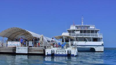 初めてのケアンズ3泊5日(2009年9月)旧友家族とバーベキュー、モアリーフ、グリーン島、クランダ