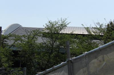 岡村小の体育館の屋根(横浜市磯子区岡村4)