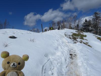 3月に東京で一番高い場所行くクマ