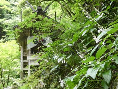実はあまり観光したことがなかった京都府北部を一巡り