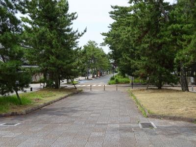 緊急報告、コロナ騒ぎ下の奈良飛鳥