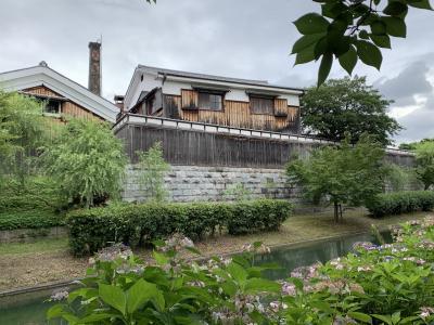 Walking path during  the rainy season  梅雨の晴れ間の散策路