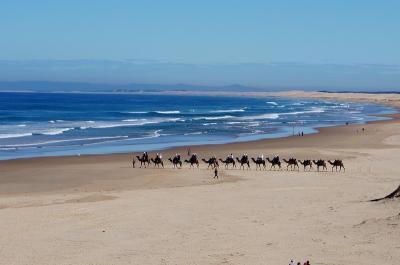 ポストコロナ オーストラリア NSW州北部海岸線 ローカルのドライブ旅1 (Roadtrip to NSW north coast)