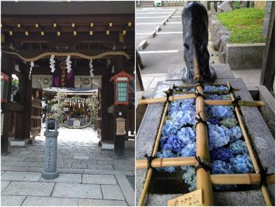 「夏越大祓」護王神社で茅の輪くぐりと花手水<いのちの和>