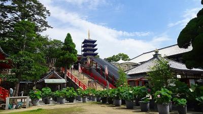 久し振りに、中山寺へ参拝しました その6。