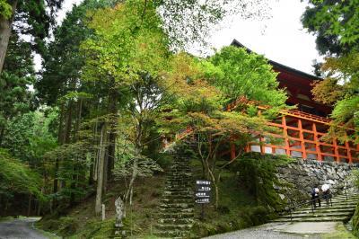 世界遺産の比叡山延暦寺、横川伽藍