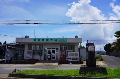 八重山諸島・周遊の旅 3(南風見田の浜とユーグレナモール)