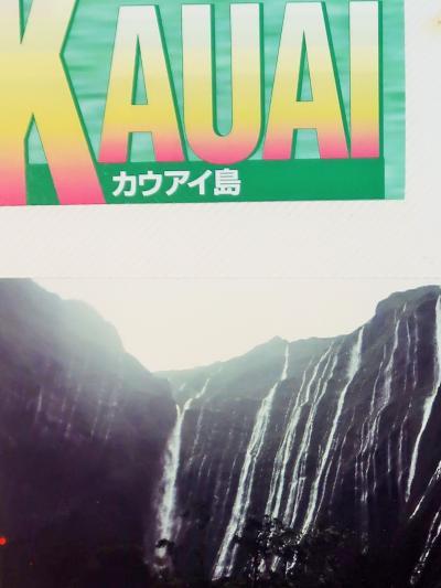 カウアイ島-3 1995/7 雨多い太古の森 ワイメア渓谷州立公園 ☆展望台からの眺め壮大