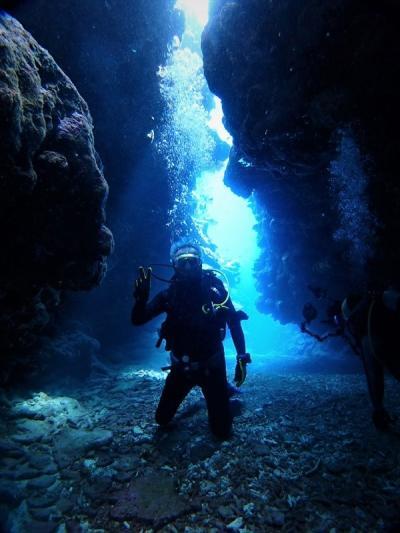 夏!! 八重山諸島 西表島の「ビームロード」でダイビングをしました。