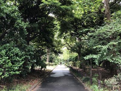 東京散歩と美術鑑賞