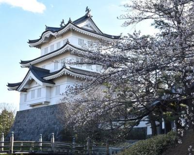 行田市 足袋蔵めぐりの後 歴史を遡るおまけ訪問