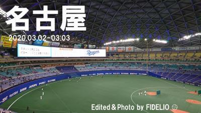 2019春 愛知・名古屋野球観戦記 〈第2幕〉 【2日目:野球観戦編】