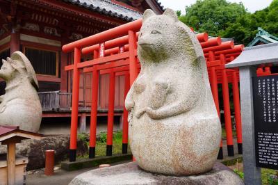 20200710-2 屋島 雨上がり?の屋島神社には、おっきな狸もいらっしゃいました