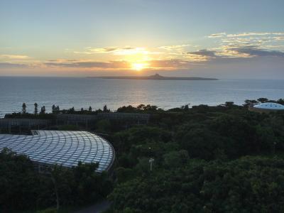 コロナに負けるな!やっと行く事が出来た沖縄本島で、ちょっとステイ!4