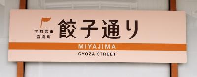 都内から片道300円で宇都宮へ餃子旅 1日目!