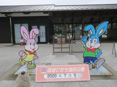 復活ゴエモン旅 マイクロツーリズムで茨城の魅力を再認識 Part3