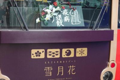 【大人鐡7】えちごトキめき鉄道「えちごトキめきリゾート雪月花」編