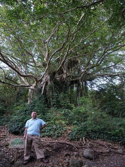 2018奄美群島【5】レンタルバイクで加計呂麻島を走ってみる