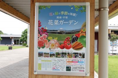 平塚★花菜ガーデンへ