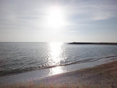 Ⅿ JUL 2020  真夏の沖縄本島・・・・・⑪帰京