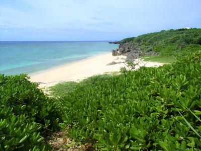 プライベートビーチの宝庫だ!与論島