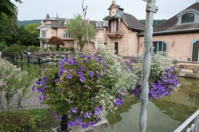 梅雨の河口湖×伊豆♪ Vol.24 ☆河口湖音楽と森の美術館 :初夏のバラとヨーロッピアンな風景♪