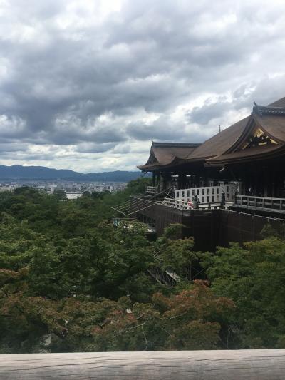 京都散歩 清水寺 食べ放題を食べて帰る