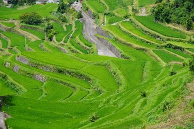 20200716-1 小豆島 中山農村歌舞伎台と、中山千枚田散策