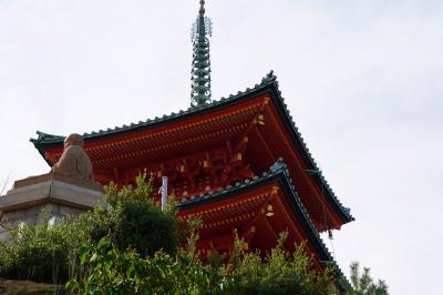 20200716-6 小豆島 西光寺の三重塔は、この辺の目印かな