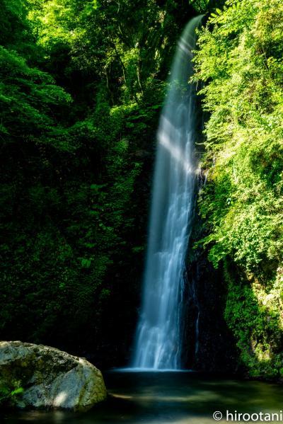 新緑の養老の滝と養老天命反天地