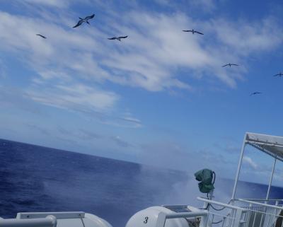 石垣島から揺れに揺れ~フェリーで3時間、日本最南端の島波照間へ