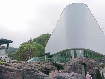 加茂水族館(大人気のクラゲ傘&子アザラシたち)