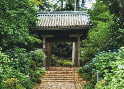 奥遠州の名刹、龍潭寺とその周辺へ。