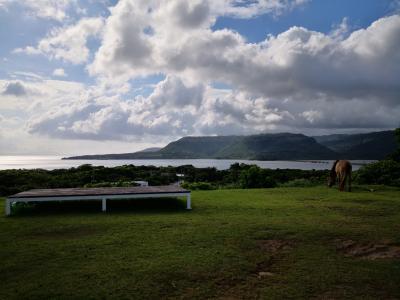 夏の西表島旅行*山と海と両方楽しみました!