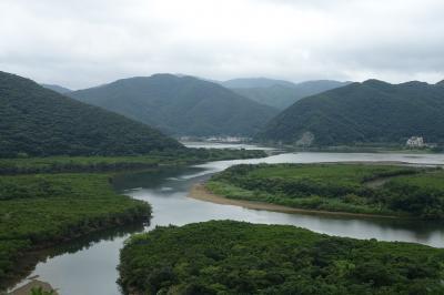 MIRU奄美に泊まる 奄美大島女子ひとり旅2  みなとやの鶏飯、マングローブの森