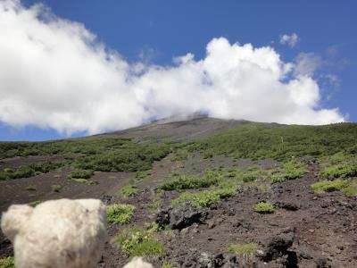 目指せ、国内3000m級22峰踏破!<1-2>富士山登頂 須走口五合目~六合目 六合目付近から頂上方向を見上げる!