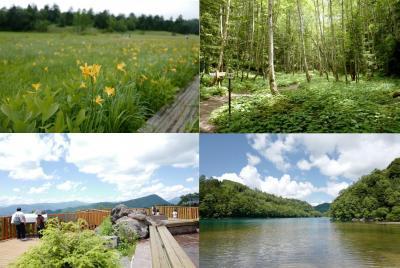 ニッコウキスゲが見頃な尾瀬から、丸沼・菅沼そして日光白根山への旅〜