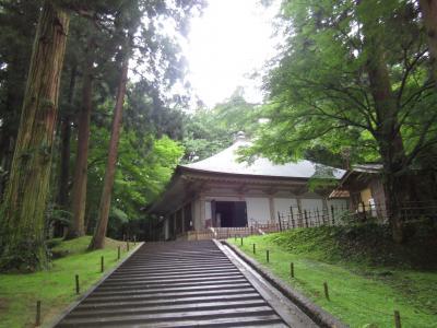 自然豊かな平泉・中尊寺は改修工事の最中でした。