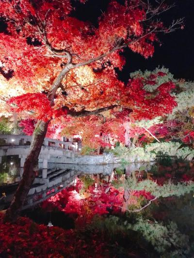 紅葉散策2019~紅葉の名所は人だらけ~