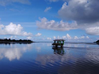 干潮近くの由布島の水牛車