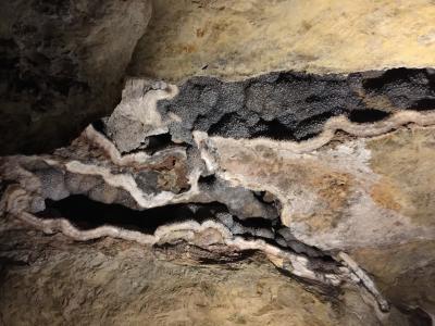 サウスダコタ州 ジュエル ケーブ国立公園 - 洞窟ツアー