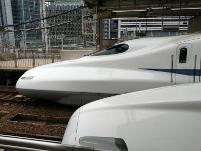 【名古屋出張】新幹線N700Sの車窓から!と言いたいところですが、N700系ですが何か?